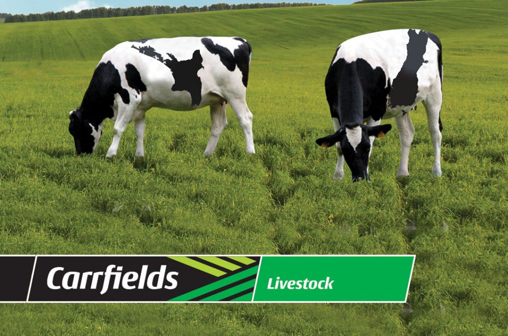 Carrfields Carrfields Livestock acquires Farm Source Livestock business - Carrfields - Your trusted partner Carrfields - Your trusted partner