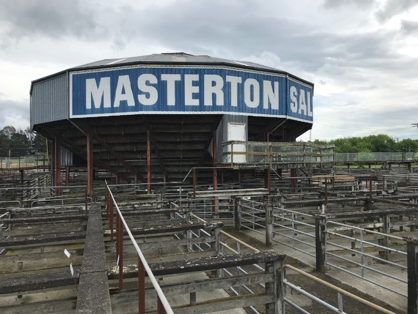 Carrfields  » Masterton Saleyards Upgrade