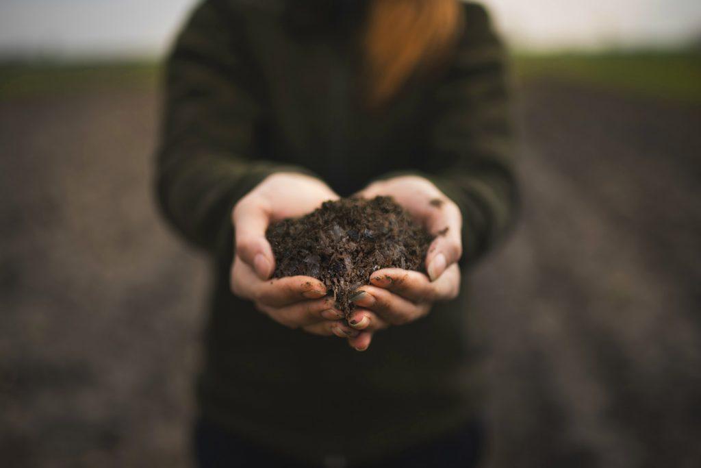 Carrfields - Spent Mushroom Compost